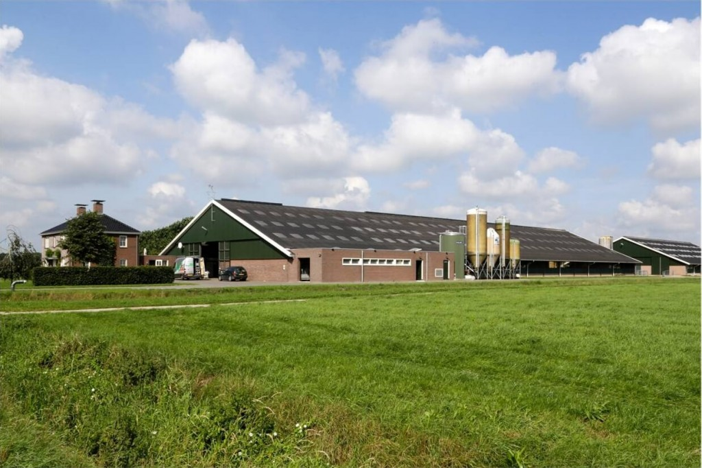 "Dairy Farm ""Maatschap Bos-Carabain"""