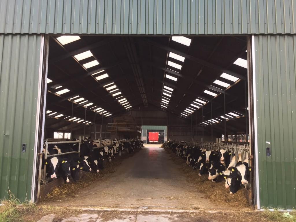"""Maatschap Bos-Carabain"" Dairy Farm"