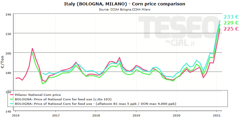 bologna-corn-price